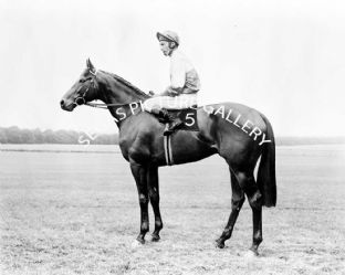 Wolver Hollow with Lester Piggott (587-01a)